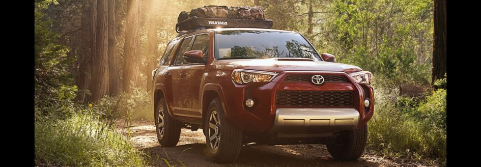A 2019 Toyota 4Runner parked in the woods